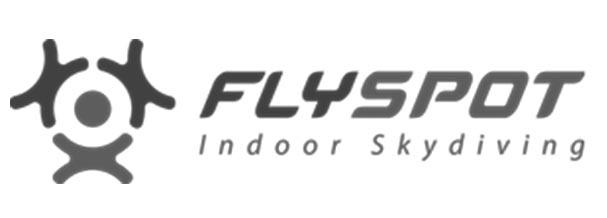 FLYSPOT